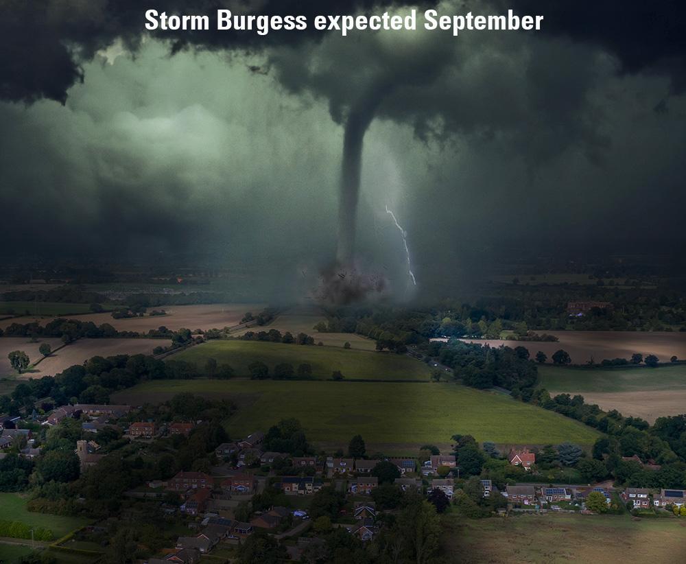 Burgessstorm-swainsthorpe